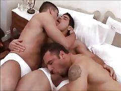 Pedro, Daniel & Max