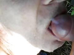 Roman bierze swing buzi